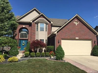 Brownstown, Brownstown Twp Single Family Home For Sale: 31811 Day Lily Drive