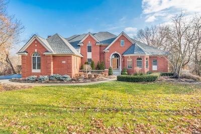 Genoa Twp MI Single Family Home For Sale: $800,000