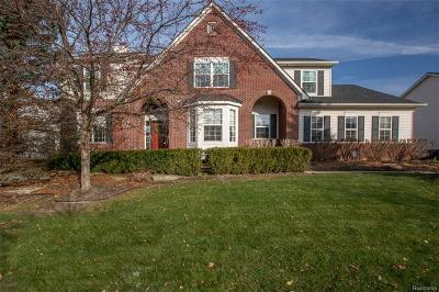 South Lyon MI Single Family Home For Sale: $425,000