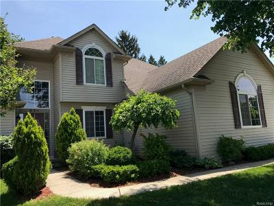 Rochester Hills Single Family Home For Sale: 531 S Livernois Road