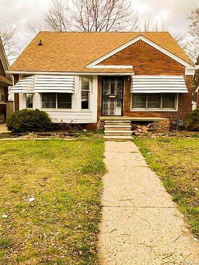 Detroit Single Family Home For Sale: 19175 Hickory Street