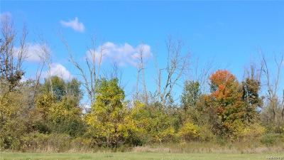 Residential Lots & Land For Sale: V/L Peppermill Road