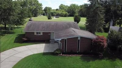 Livonia Single Family Home For Sale: 16224 Westbrook Street