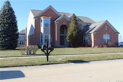 MACOMB Single Family Home For Sale: 48883 Rattle Run Drive