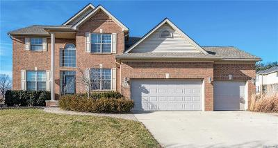 Rochester Hills Single Family Home For Sale: 3120 Villa Nova Circle