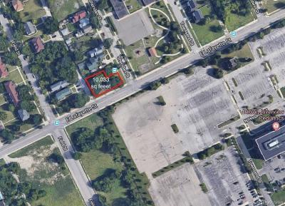 Detroit Residential Lots & Land For Sale: 7339 E Lafayette
