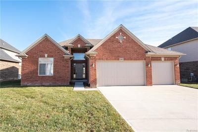 MACOMB Single Family Home For Sale: 56802 Holiday Pine Drive