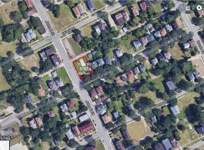 Detroit Residential Lots & Land For Sale: 205 Melbourne