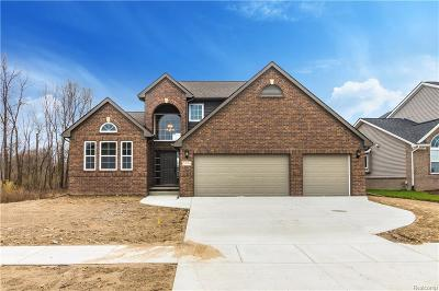 White Lake, White Lake Twp Single Family Home For Sale: 2161 Crested Butte Drive