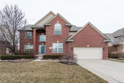 Macomb Twp Single Family Home For Sale: 21377 Clayton Drive