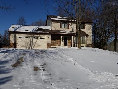 White Lake, White Lake Twp Single Family Home For Sale: 4643 Pasture Lane