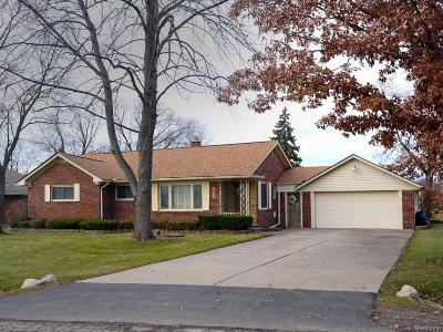 Clinton Twp Single Family Home For Sale: 16925 Penrod Drive
