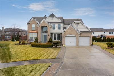 Sterling Heights Single Family Home For Sale: 14994 Lockwood Court