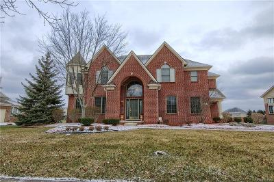 CANTON Single Family Home For Sale: 1414 Tradition Drive