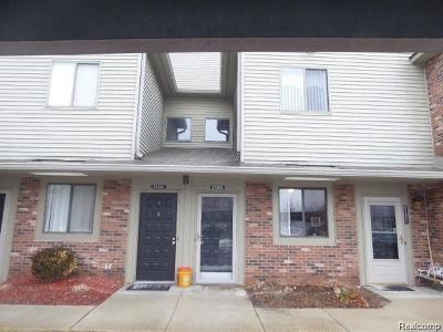 Farmington Hills Rental For Rent: 21905 Indian Creek Drive #28