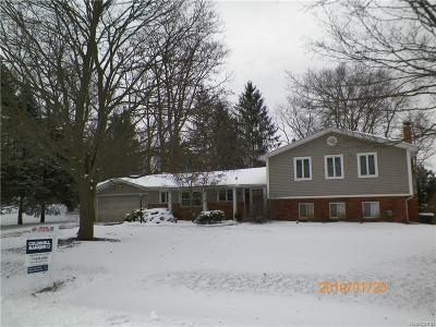 Northville Single Family Home For Sale: 47025 S Chigwidden Drive