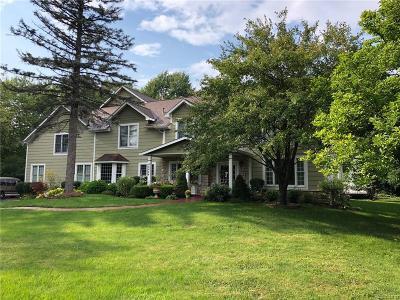 Novi Single Family Home For Sale: 46644 W 9 Mile Road