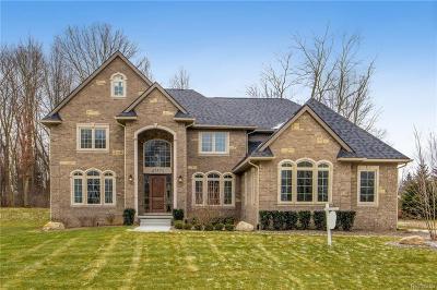 Northville, Novi, Canton, Plymouth, Livonia, Westland Single Family Home For Sale: 47571 Alpine Drive