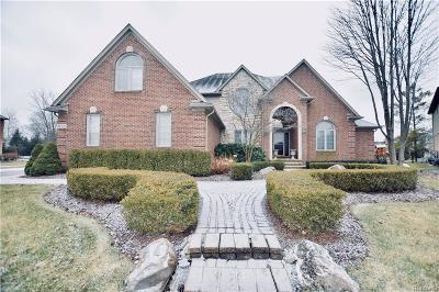Clinton Twp Single Family Home For Sale: 20115 Huron Drive