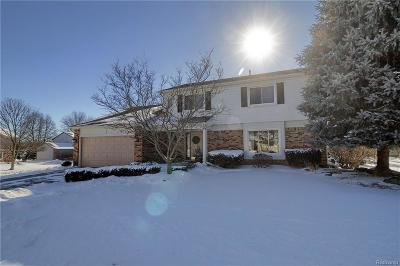 Novi Single Family Home For Sale: 45929 Crestview Drive