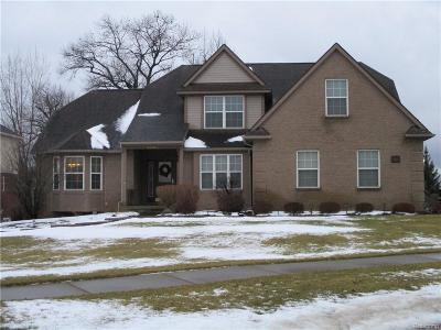 White Lake Single Family Home For Sale: 8205 Eastway Drive