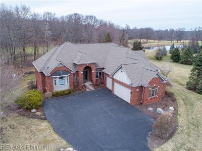 Single Family Home For Sale: 3889 Honors Trace