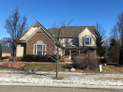 Commerce Twp Single Family Home For Sale: 8344 Kingfisher Court