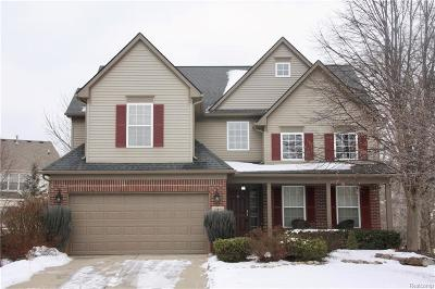 Northville Single Family Home For Sale: 50088 Venice Court