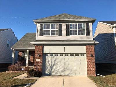 Novi Single Family Home For Sale: 51284 E Bourne Terrace