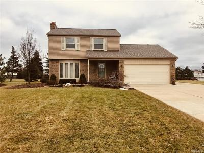 Clinton Twp Single Family Home For Sale: 20876 S Miles Street