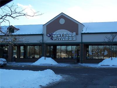Clarkston, Independence Twp, Springfield Twp Commercial For Sale: 7113 Dixie Highway