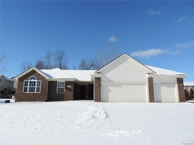 White Lake Single Family Home For Sale: 9582 Shelby Dr