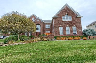 Novi Single Family Home For Sale: 26604 Glenwood Drive