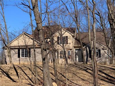 White Lake Single Family Home For Sale: 6571 Teluride Drive