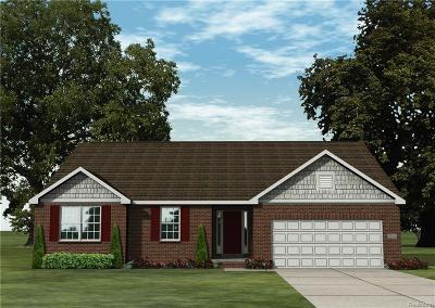 Macomb Twp Single Family Home For Sale: 24850 Kabarda Drive