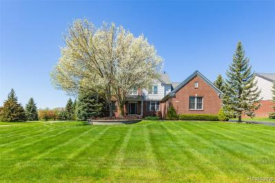 Oakland Twp Single Family Home For Sale: 4546 Woodcliff Crt Court