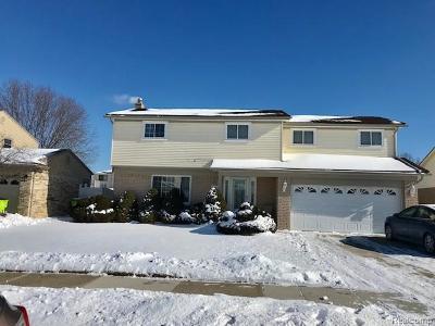Macomb Twp Single Family Home For Sale: 46074 Apple Lane