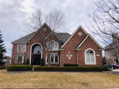 Northville Single Family Home For Sale: 18503 Clairmont Circle E