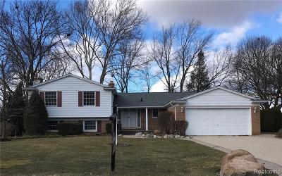 Bloomfield Twp Single Family Home For Sale: 505 Fox River Drive