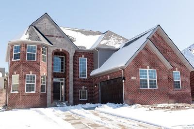 Novi Single Family Home For Sale: 41822 Steinbeck Glen Road