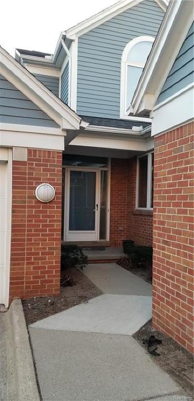 Detroit Condo/Townhouse For Sale: 283 Leeward Court