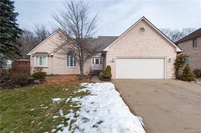 Northville Single Family Home For Sale: 40536 N Northville Trail