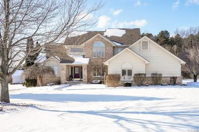 White Lake Single Family Home For Sale: 6001 Hickory Meadows Dr