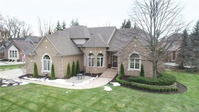Shelby Twp MI Single Family Home For Sale: $599,900
