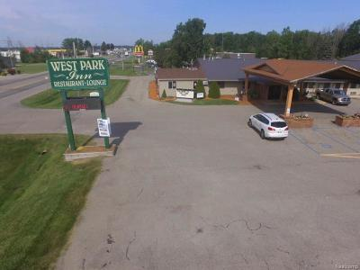 Commercial For Sale: 440 W Sanilac Road