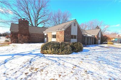 Livonia Single Family Home For Sale: 14221 Newburgh Road
