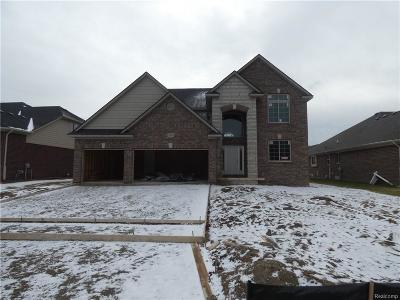 Macomb Twp Single Family Home For Sale: 21852 Rio Grande Drive