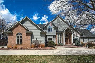 Novi Single Family Home For Sale: 47550 Iroquois Court