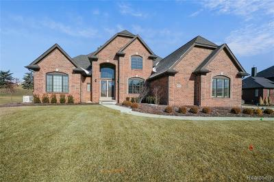Green Oak Twp MI Single Family Home For Sale: $849,900