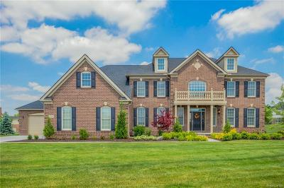 Northville Single Family Home For Sale: 50700 Briar Ridge Lane